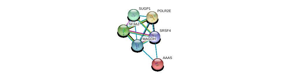 http://string-db.org/version_10/api/image/networkList?limit=0&targetmode=proteins&caller_identity=gene_cards&network_flavor=evidence&identifiers=9606.ENSP00000362900%0d%0a9606.ENSP00000360525%0d%0a9606.ENSP00000221494%0d%0a9606.ENSP00000209873%0d%0a9606.ENSP00000215587%0d%0a9606.ENSP00000247001%0d%0a