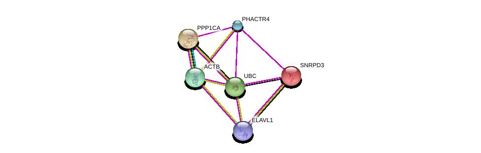http://string-db.org/version_10/api/image/networkList?limit=0&targetmode=proteins&caller_identity=gene_cards&network_flavor=evidence&identifiers=9606.ENSP00000362942%0d%0a9606.ENSP00000326031%0d%0a9606.ENSP00000349960%0d%0a9606.ENSP00000344818%0d%0a9606.ENSP00000215829%0d%0a9606.ENSP00000385269%0d%0a