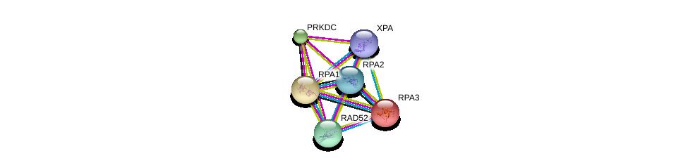 http://string-db.org/version_10/api/image/networkList?limit=0&targetmode=proteins&caller_identity=gene_cards&network_flavor=evidence&identifiers=9606.ENSP00000363021%0d%0a9606.ENSP00000223129%0d%0a9606.ENSP00000254719%0d%0a9606.ENSP00000313420%0d%0a9606.ENSP00000364270%0d%0a9606.ENSP00000351284%0d%0a