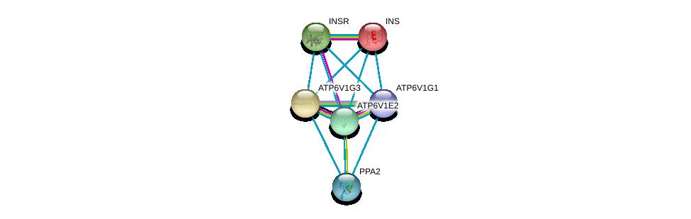 http://string-db.org/version_10/api/image/networkList?limit=0&targetmode=proteins&caller_identity=gene_cards&network_flavor=evidence&identifiers=9606.ENSP00000363162%0d%0a9606.ENSP00000304891%0d%0a9606.ENSP00000250971%0d%0a9606.ENSP00000281087%0d%0a9606.ENSP00000303830%0d%0a9606.ENSP00000343885%0d%0a