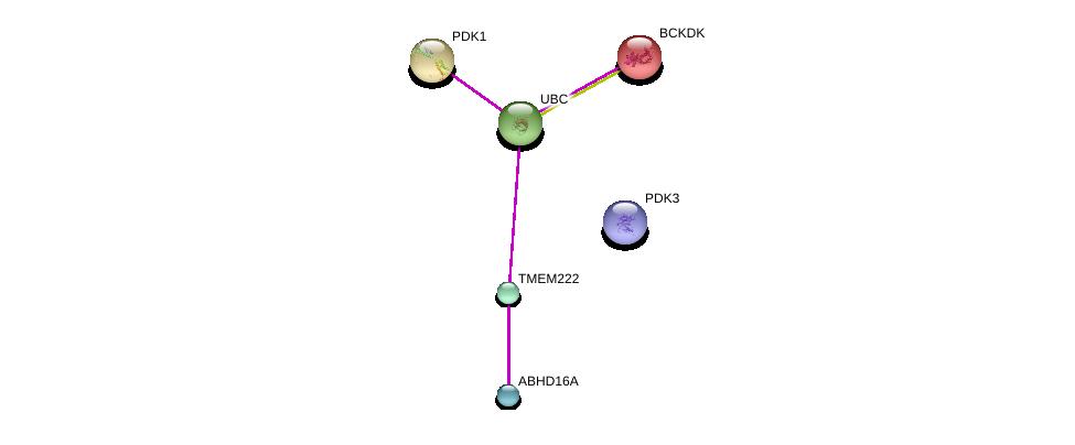 http://string-db.org/version_10/api/image/networkList?limit=0&targetmode=proteins&caller_identity=gene_cards&network_flavor=evidence&identifiers=9606.ENSP00000363189%0d%0a9606.ENSP00000379282%0d%0a9606.ENSP00000344818%0d%0a9606.ENSP00000282077%0d%0a9606.ENSP00000387536%0d%0a9606.ENSP00000219794%0d%0a