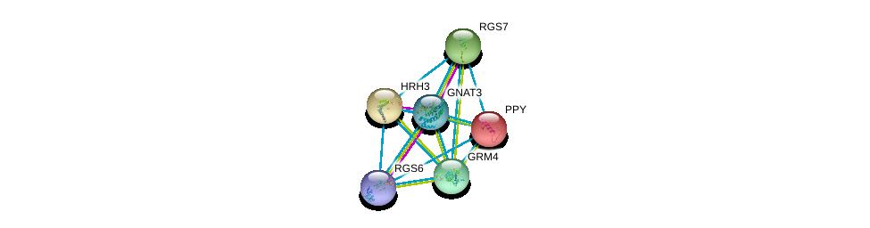 http://string-db.org/version_10/api/image/networkList?limit=0&targetmode=proteins&caller_identity=gene_cards&network_flavor=evidence&identifiers=9606.ENSP00000363296%0d%0a9606.ENSP00000355523%0d%0a9606.ENSP00000451030%0d%0a9606.ENSP00000342560%0d%0a9606.ENSP00000381339%0d%0a9606.ENSP00000225992%0d%0a