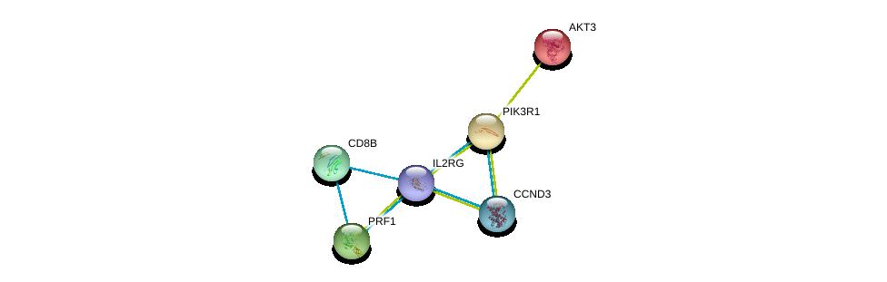 http://string-db.org/version_10/api/image/networkList?limit=0&targetmode=proteins&caller_identity=gene_cards&network_flavor=evidence&identifiers=9606.ENSP00000363318%0d%0a9606.ENSP00000263826%0d%0a9606.ENSP00000274335%0d%0a9606.ENSP00000316746%0d%0a9606.ENSP00000331172%0d%0a9606.ENSP00000362082%0d%0a