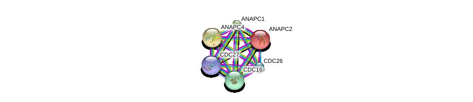 http://string-db.org/version_10/api/image/networkList?limit=0&targetmode=proteins&caller_identity=gene_cards&network_flavor=evidence&identifiers=9606.ENSP00000363322%0d%0a9606.ENSP00000314004%0d%0a9606.ENSP00000434614%0d%0a9606.ENSP00000348554%0d%0a9606.ENSP00000318775%0d%0a9606.ENSP00000339109%0d%0a