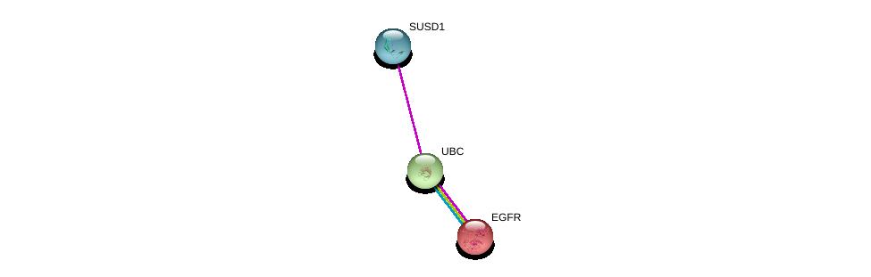 http://string-db.org/version_10/api/image/networkList?limit=0&targetmode=proteins&caller_identity=gene_cards&network_flavor=evidence&identifiers=9606.ENSP00000363388%0d%0a9606.ENSP00000344818%0d%0a9606.ENSP00000275493%0d%0a