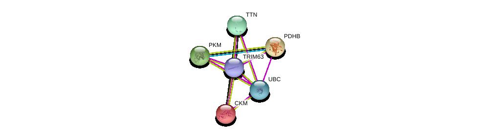 http://string-db.org/version_10/api/image/networkList?limit=0&targetmode=proteins&caller_identity=gene_cards&network_flavor=evidence&identifiers=9606.ENSP00000363390%0d%0a9606.ENSP00000343764%0d%0a9606.ENSP00000307241%0d%0a9606.ENSP00000320171%0d%0a9606.ENSP00000221476%0d%0a9606.ENSP00000344818%0d%0a