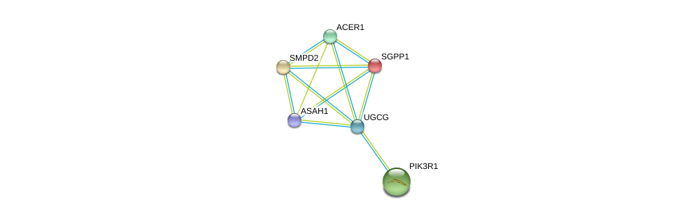 http://string-db.org/version_10/api/image/networkList?limit=0&targetmode=proteins&caller_identity=gene_cards&network_flavor=evidence&identifiers=9606.ENSP00000363397%0d%0a9606.ENSP00000301452%0d%0a9606.ENSP00000371152%0d%0a9606.ENSP00000247225%0d%0a9606.ENSP00000258052%0d%0a9606.ENSP00000274335%0d%0a