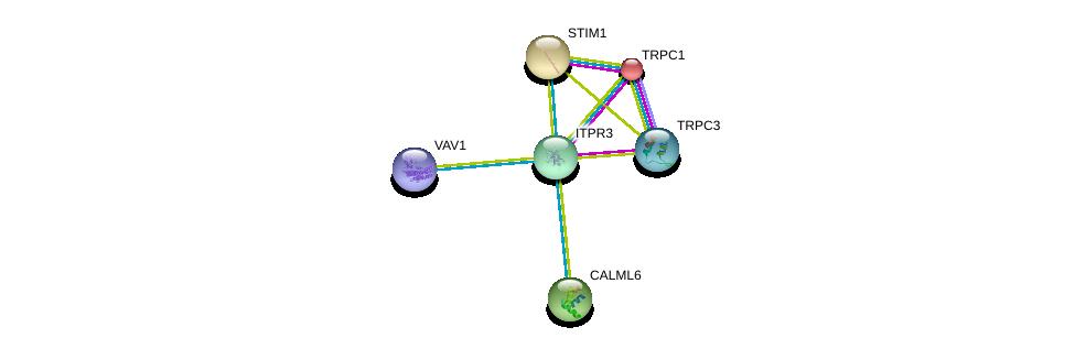 http://string-db.org/version_10/api/image/networkList?limit=0&targetmode=proteins&caller_identity=gene_cards&network_flavor=evidence&identifiers=9606.ENSP00000363435%0d%0a9606.ENSP00000273482%0d%0a9606.ENSP00000368966%0d%0a9606.ENSP00000304643%0d%0a9606.ENSP00000472929%0d%0a9606.ENSP00000300737%0d%0a