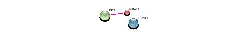 http://string-db.org/version_10/api/image/networkList?limit=0&targetmode=proteins&caller_identity=gene_cards&network_flavor=evidence&identifiers=9606.ENSP00000363520%0d%0a9606.ENSP00000363680%0d%0a9606.ENSP00000385269%0d%0a