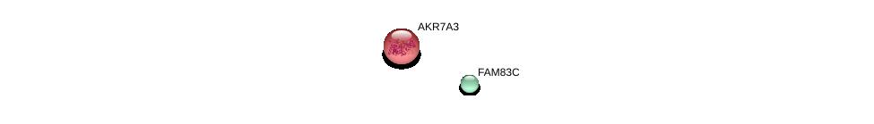 http://string-db.org/version_10/api/image/networkList?limit=0&targetmode=proteins&caller_identity=gene_cards&network_flavor=evidence&identifiers=9606.ENSP00000363529%0d%0a9606.ENSP00000355377%0d%0a