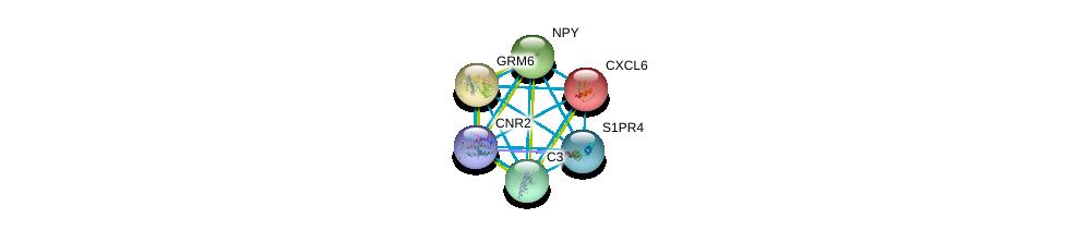 http://string-db.org/version_10/api/image/networkList?limit=0&targetmode=proteins&caller_identity=gene_cards&network_flavor=evidence&identifiers=9606.ENSP00000363596%0d%0a9606.ENSP00000226317%0d%0a9606.ENSP00000231188%0d%0a9606.ENSP00000242152%0d%0a9606.ENSP00000245907%0d%0a9606.ENSP00000246115%0d%0a