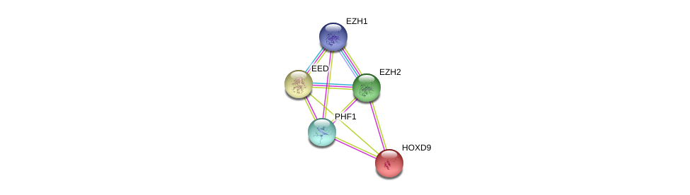 http://string-db.org/version_10/api/image/networkList?limit=0&targetmode=proteins&caller_identity=gene_cards&network_flavor=evidence&identifiers=9606.ENSP00000363640%0d%0a9606.ENSP00000320147%0d%0a9606.ENSP00000263360%0d%0a9606.ENSP00000263360%0d%0a9606.ENSP00000249499%0d%0a9606.ENSP00000404658%0d%0a