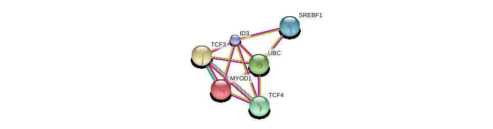 http://string-db.org/version_10/api/image/networkList?limit=0&targetmode=proteins&caller_identity=gene_cards&network_flavor=evidence&identifiers=9606.ENSP00000363689%0d%0a9606.ENSP00000262965%0d%0a9606.ENSP00000344818%0d%0a9606.ENSP00000346440%0d%0a9606.ENSP00000250003%0d%0a9606.ENSP00000348069%0d%0a