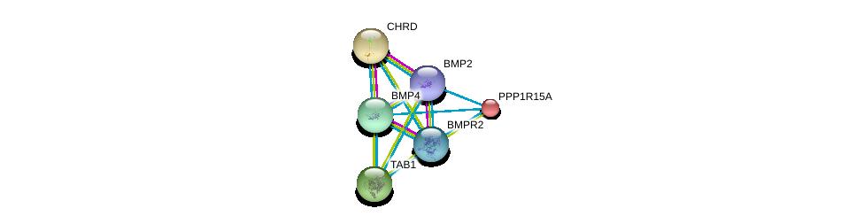 http://string-db.org/version_10/api/image/networkList?limit=0&targetmode=proteins&caller_identity=gene_cards&network_flavor=evidence&identifiers=9606.ENSP00000363708%0d%0a9606.ENSP00000245451%0d%0a9606.ENSP00000368104%0d%0a9606.ENSP00000200453%0d%0a9606.ENSP00000204604%0d%0a9606.ENSP00000216160%0d%0a