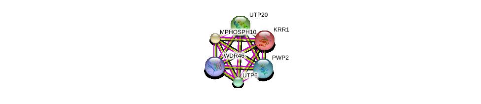 http://string-db.org/version_10/api/image/networkList?limit=0&targetmode=proteins&caller_identity=gene_cards&network_flavor=evidence&identifiers=9606.ENSP00000363746%0d%0a9606.ENSP00000229214%0d%0a9606.ENSP00000244230%0d%0a9606.ENSP00000261637%0d%0a9606.ENSP00000261708%0d%0a9606.ENSP00000291576%0d%0a