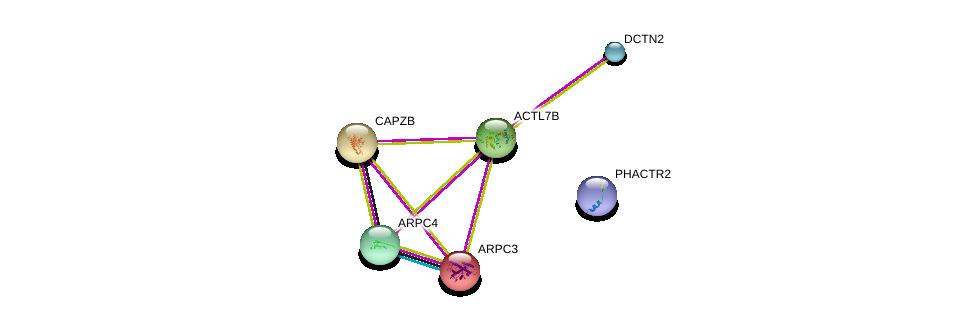 http://string-db.org/version_10/api/image/networkList?limit=0&targetmode=proteins&caller_identity=gene_cards&network_flavor=evidence&identifiers=9606.ENSP00000363799%0d%0a9606.ENSP00000408910%0d%0a9606.ENSP00000264202%0d%0a9606.ENSP00000417038%0d%0a9606.ENSP00000388169%0d%0a9606.ENSP00000228825%0d%0a