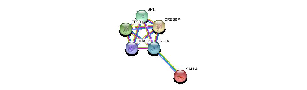 http://string-db.org/version_10/api/image/networkList?limit=0&targetmode=proteins&caller_identity=gene_cards&network_flavor=evidence&identifiers=9606.ENSP00000363804%0d%0a9606.ENSP00000262367%0d%0a9606.ENSP00000263253%0d%0a9606.ENSP00000430432%0d%0a9606.ENSP00000329357%0d%0a9606.ENSP00000217086%0d%0a