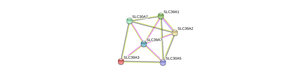 http://string-db.org/version_10/api/image/networkList?limit=0&targetmode=proteins&caller_identity=gene_cards&network_flavor=evidence&identifiers=9606.ENSP00000363807%0d%0a9606.ENSP00000350278%0d%0a9606.ENSP00000379836%0d%0a9606.ENSP00000269740%0d%0a9606.ENSP00000298681%0d%0a9606.ENSP00000309710%0d%0a