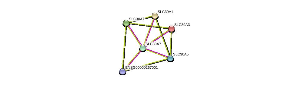 http://string-db.org/version_10/api/image/networkList?limit=0&targetmode=proteins&caller_identity=gene_cards&network_flavor=evidence&identifiers=9606.ENSP00000363807%0d%0a9606.ENSP00000350278%0d%0a9606.ENSP00000379836%0d%0a9606.ENSP00000269740%0d%0a9606.ENSP00000309710%0d%0a9606.ENSP00000467958%0d%0a