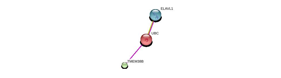http://string-db.org/version_10/api/image/networkList?limit=0&targetmode=proteins&caller_identity=gene_cards&network_flavor=evidence&identifiers=9606.ENSP00000363824%0d%0a9606.ENSP00000344818%0d%0a9606.ENSP00000385269%0d%0a