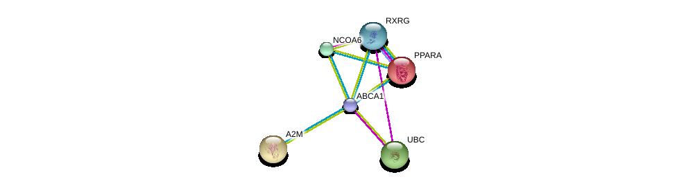 http://string-db.org/version_10/api/image/networkList?limit=0&targetmode=proteins&caller_identity=gene_cards&network_flavor=evidence&identifiers=9606.ENSP00000363868%0d%0a9606.ENSP00000344818%0d%0a9606.ENSP00000323929%0d%0a9606.ENSP00000262735%0d%0a9606.ENSP00000351894%0d%0a9606.ENSP00000352900%0d%0a