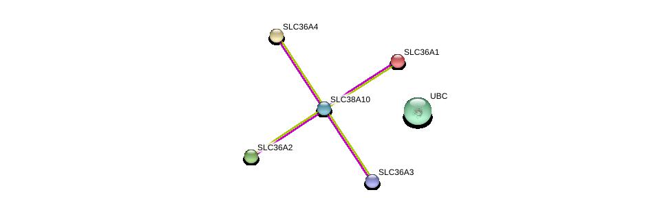 http://string-db.org/version_10/api/image/networkList?limit=0&targetmode=proteins&caller_identity=gene_cards&network_flavor=evidence&identifiers=9606.ENSP00000363891%0d%0a9606.ENSP00000344818%0d%0a9606.ENSP00000334223%0d%0a9606.ENSP00000317382%0d%0a9606.ENSP00000243389%0d%0a9606.ENSP00000366942%0d%0a
