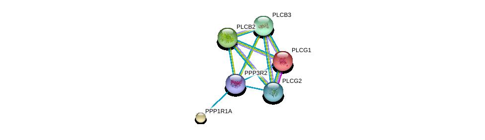 http://string-db.org/version_10/api/image/networkList?limit=0&targetmode=proteins&caller_identity=gene_cards&network_flavor=evidence&identifiers=9606.ENSP00000363939%0d%0a9606.ENSP00000244007%0d%0a9606.ENSP00000352336%0d%0a9606.ENSP00000257905%0d%0a9606.ENSP00000260402%0d%0a9606.ENSP00000279230%0d%0a