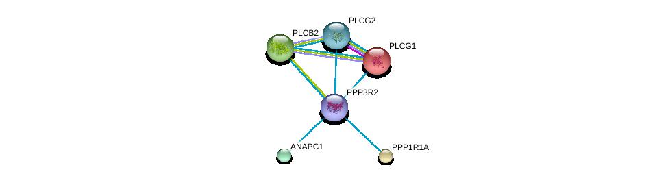 http://string-db.org/version_10/api/image/networkList?limit=0&targetmode=proteins&caller_identity=gene_cards&network_flavor=evidence&identifiers=9606.ENSP00000363939%0d%0a9606.ENSP00000244007%0d%0a9606.ENSP00000352336%0d%0a9606.ENSP00000339109%0d%0a9606.ENSP00000257905%0d%0a9606.ENSP00000260402%0d%0a