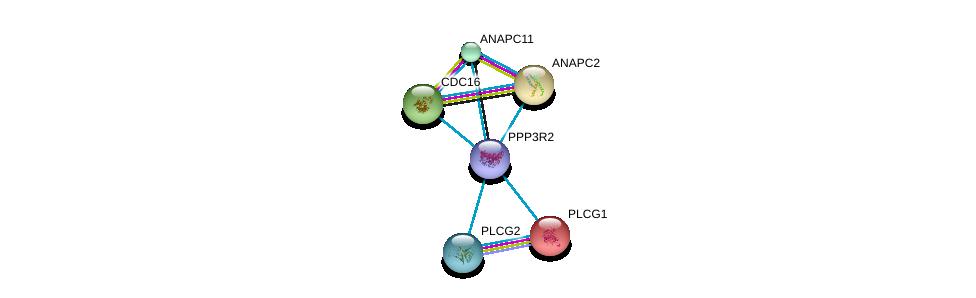 http://string-db.org/version_10/api/image/networkList?limit=0&targetmode=proteins&caller_identity=gene_cards&network_flavor=evidence&identifiers=9606.ENSP00000363939%0d%0a9606.ENSP00000352336%0d%0a9606.ENSP00000244007%0d%0a9606.ENSP00000349957%0d%0a9606.ENSP00000348554%0d%0a9606.ENSP00000314004%0d%0a