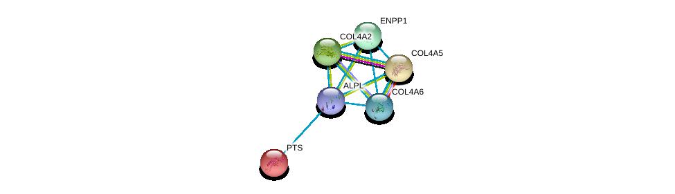 http://string-db.org/version_10/api/image/networkList?limit=0&targetmode=proteins&caller_identity=gene_cards&network_flavor=evidence&identifiers=9606.ENSP00000363965%0d%0a9606.ENSP00000280362%0d%0a9606.ENSP00000331902%0d%0a9606.ENSP00000353654%0d%0a9606.ENSP00000354238%0d%0a9606.ENSP00000361290%0d%0a