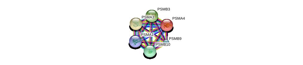 http://string-db.org/version_10/api/image/networkList?limit=0&targetmode=proteins&caller_identity=gene_cards&network_flavor=evidence&identifiers=9606.ENSP00000363993%0d%0a9606.ENSP00000351314%0d%0a9606.ENSP00000216455%0d%0a9606.ENSP00000414359%0d%0a9606.ENSP00000044462%0d%0a9606.ENSP00000225426%0d%0a