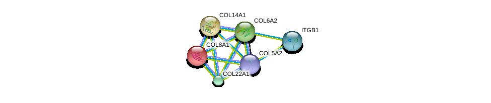 http://string-db.org/version_10/api/image/networkList?limit=0&targetmode=proteins&caller_identity=gene_cards&network_flavor=evidence&identifiers=9606.ENSP00000364000%0d%0a9606.ENSP00000261037%0d%0a9606.ENSP00000297848%0d%0a9606.ENSP00000300527%0d%0a9606.ENSP00000303153%0d%0a9606.ENSP00000303351%0d%0a