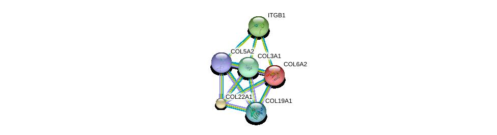 http://string-db.org/version_10/api/image/networkList?limit=0&targetmode=proteins&caller_identity=gene_cards&network_flavor=evidence&identifiers=9606.ENSP00000364000%0d%0a9606.ENSP00000300527%0d%0a9606.ENSP00000303153%0d%0a9606.ENSP00000303351%0d%0a9606.ENSP00000304408%0d%0a9606.ENSP00000316030%0d%0a