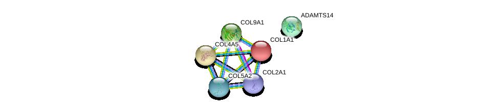 http://string-db.org/version_10/api/image/networkList?limit=0&targetmode=proteins&caller_identity=gene_cards&network_flavor=evidence&identifiers=9606.ENSP00000364000%0d%0a9606.ENSP00000349790%0d%0a9606.ENSP00000225964%0d%0a9606.ENSP00000362304%0d%0a9606.ENSP00000369889%0d%0a9606.ENSP00000331902%0d%0a