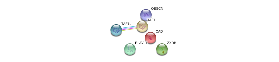 http://string-db.org/version_10/api/image/networkList?limit=0&targetmode=proteins&caller_identity=gene_cards&network_flavor=evidence&identifiers=9606.ENSP00000364023%0d%0a9606.ENSP00000385269%0d%0a9606.ENSP00000264705%0d%0a9606.ENSP00000455507%0d%0a9606.ENSP00000418379%0d%0a9606.ENSP00000276072%0d%0a