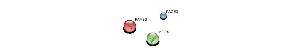 http://string-db.org/version_10/api/image/networkList?limit=0&targetmode=proteins&caller_identity=gene_cards&network_flavor=evidence&identifiers=9606.ENSP00000364089%0d%0a9606.ENSP00000321684%0d%0a9606.ENSP00000318716%0d%0a