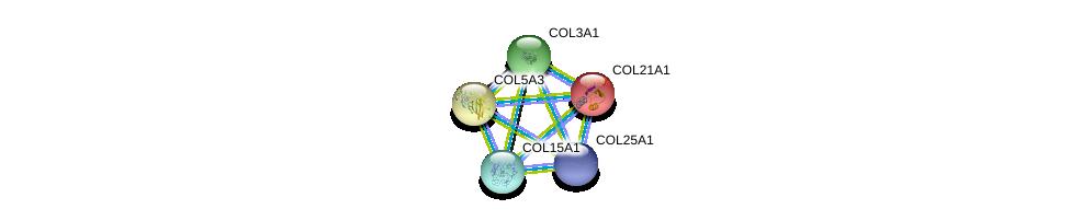 http://string-db.org/version_10/api/image/networkList?limit=0&targetmode=proteins&caller_identity=gene_cards&network_flavor=evidence&identifiers=9606.ENSP00000364140%0d%0a9606.ENSP00000304408%0d%0a9606.ENSP00000304408%0d%0a9606.ENSP00000244728%0d%0a9606.ENSP00000264828%0d%0a9606.ENSP00000382083%0d%0a