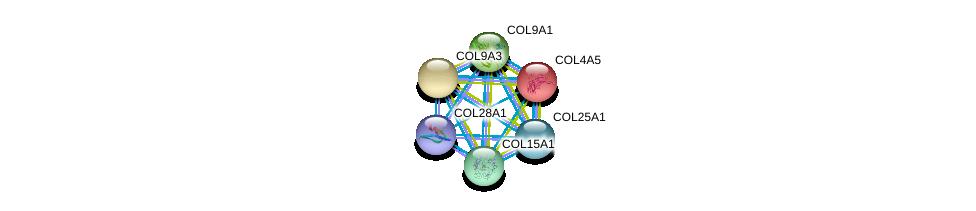 http://string-db.org/version_10/api/image/networkList?limit=0&targetmode=proteins&caller_identity=gene_cards&network_flavor=evidence&identifiers=9606.ENSP00000364140%0d%0a9606.ENSP00000331902%0d%0a9606.ENSP00000341640%0d%0a9606.ENSP00000349790%0d%0a9606.ENSP00000382356%0d%0a9606.ENSP00000382083%0d%0a