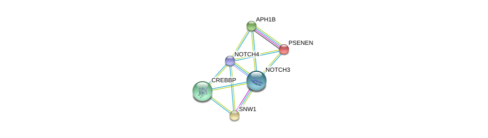 http://string-db.org/version_10/api/image/networkList?limit=0&targetmode=proteins&caller_identity=gene_cards&network_flavor=evidence&identifiers=9606.ENSP00000364163%0d%0a9606.ENSP00000222266%0d%0a9606.ENSP00000261531%0d%0a9606.ENSP00000261879%0d%0a9606.ENSP00000262367%0d%0a9606.ENSP00000263388%0d%0a