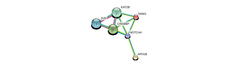 http://string-db.org/version_10/api/image/networkList?limit=0&targetmode=proteins&caller_identity=gene_cards&network_flavor=evidence&identifiers=9606.ENSP00000364163%0d%0a9606.ENSP00000261879%0d%0a9606.ENSP00000262367%0d%0a9606.ENSP00000261531%0d%0a9606.ENSP00000263754%0d%0a9606.ENSP00000360266%0d%0a