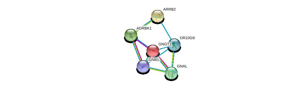 http://string-db.org/version_10/api/image/networkList?limit=0&targetmode=proteins&caller_identity=gene_cards&network_flavor=evidence&identifiers=9606.ENSP00000364164%0d%0a9606.ENSP00000248572%0d%0a9606.ENSP00000367869%0d%0a9606.ENSP00000334051%0d%0a9606.ENSP00000312262%0d%0a9606.ENSP00000269260%0d%0a