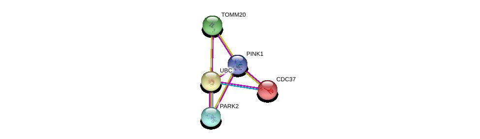 http://string-db.org/version_10/api/image/networkList?limit=0&targetmode=proteins&caller_identity=gene_cards&network_flavor=evidence&identifiers=9606.ENSP00000364204%0d%0a9606.ENSP00000355865%0d%0a9606.ENSP00000344818%0d%0a9606.ENSP00000355566%0d%0a9606.ENSP00000222005%0d%0a9606.ENSP00000222005%0d%0a
