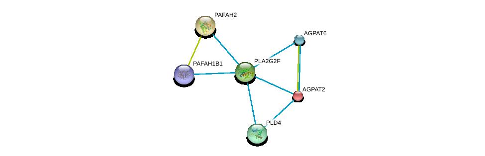 http://string-db.org/version_10/api/image/networkList?limit=0&targetmode=proteins&caller_identity=gene_cards&network_flavor=evidence&identifiers=9606.ENSP00000364243%0d%0a9606.ENSP00000363400%0d%0a9606.ENSP00000360761%0d%0a9606.ENSP00000376372%0d%0a9606.ENSP00000380184%0d%0a9606.ENSP00000380378%0d%0a