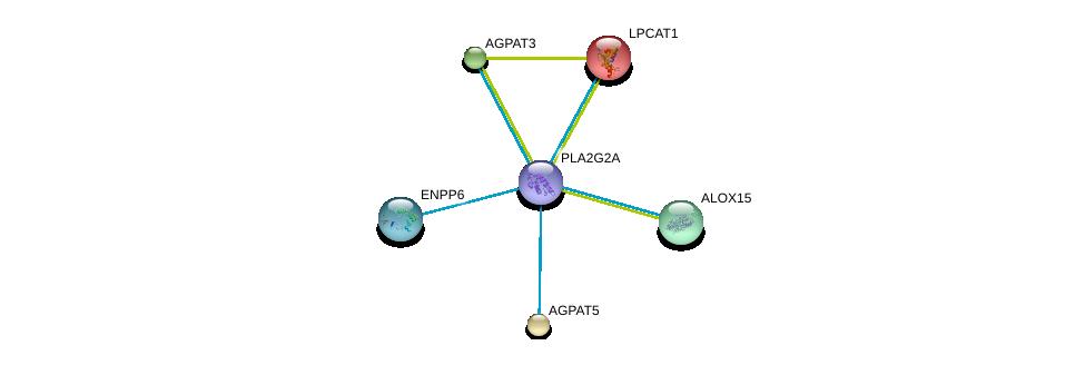 http://string-db.org/version_10/api/image/networkList?limit=0&targetmode=proteins&caller_identity=gene_cards&network_flavor=evidence&identifiers=9606.ENSP00000364252%0d%0a9606.ENSP00000283415%0d%0a9606.ENSP00000285518%0d%0a9606.ENSP00000291572%0d%0a9606.ENSP00000293761%0d%0a9606.ENSP00000296741%0d%0a
