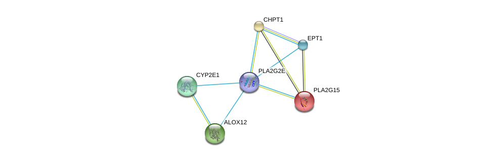 http://string-db.org/version_10/api/image/networkList?limit=0&targetmode=proteins&caller_identity=gene_cards&network_flavor=evidence&identifiers=9606.ENSP00000364257%0d%0a9606.ENSP00000219345%0d%0a9606.ENSP00000229266%0d%0a9606.ENSP00000251535%0d%0a9606.ENSP00000252945%0d%0a9606.ENSP00000260585%0d%0a