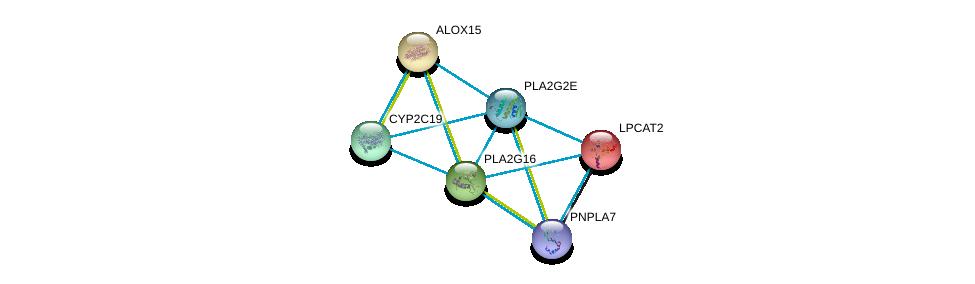 http://string-db.org/version_10/api/image/networkList?limit=0&targetmode=proteins&caller_identity=gene_cards&network_flavor=evidence&identifiers=9606.ENSP00000364257%0d%0a9606.ENSP00000293761%0d%0a9606.ENSP00000360372%0d%0a9606.ENSP00000262134%0d%0a9606.ENSP00000320337%0d%0a9606.ENSP00000384610%0d%0a