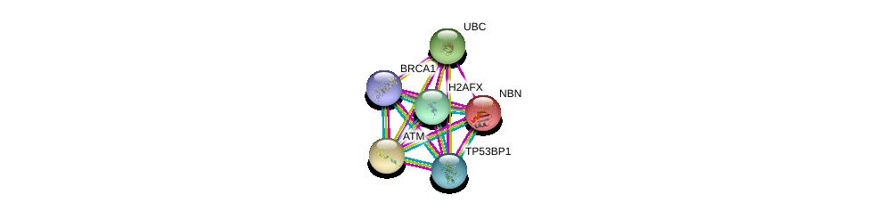 http://string-db.org/version_10/api/image/networkList?limit=0&targetmode=proteins&caller_identity=gene_cards&network_flavor=evidence&identifiers=9606.ENSP00000364310%0d%0a9606.ENSP00000344818%0d%0a9606.ENSP00000371475%0d%0a9606.ENSP00000418960%0d%0a9606.ENSP00000265433%0d%0a9606.ENSP00000278616%0d%0a