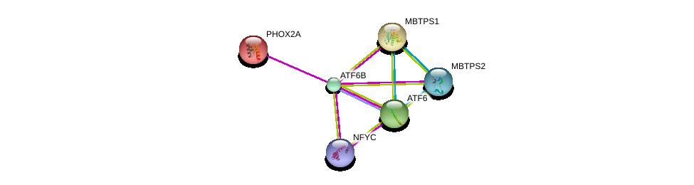 http://string-db.org/version_10/api/image/networkList?limit=0&targetmode=proteins&caller_identity=gene_cards&network_flavor=evidence&identifiers=9606.ENSP00000364349%0d%0a9606.ENSP00000368798%0d%0a9606.ENSP00000344223%0d%0a9606.ENSP00000298231%0d%0a9606.ENSP00000356919%0d%0a9606.ENSP00000396620%0d%0a