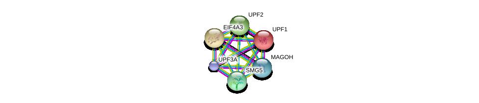 http://string-db.org/version_10/api/image/networkList?limit=0&targetmode=proteins&caller_identity=gene_cards&network_flavor=evidence&identifiers=9606.ENSP00000364448%0d%0a9606.ENSP00000355261%0d%0a9606.ENSP00000262803%0d%0a9606.ENSP00000360525%0d%0a9606.ENSP00000269349%0d%0a9606.ENSP00000348708%0d%0a