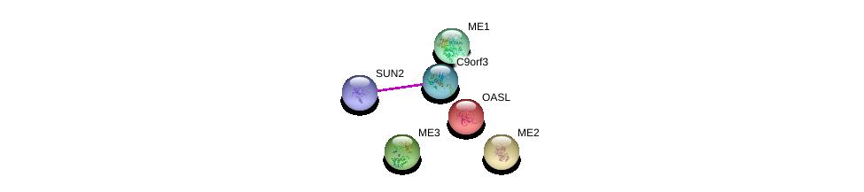http://string-db.org/version_10/api/image/networkList?limit=0&targetmode=proteins&caller_identity=gene_cards&network_flavor=evidence&identifiers=9606.ENSP00000364464%0d%0a9606.ENSP00000385616%0d%0a9606.ENSP00000321070%0d%0a9606.ENSP00000352657%0d%0a9606.ENSP00000358719%0d%0a9606.ENSP00000257570%0d%0a